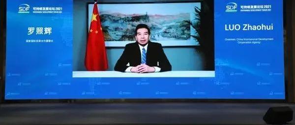 """关注丨国家国际发展合作署署长罗照辉:朗朗""""一带一路""""助力全球可持续发展"""